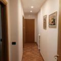 NOVITA'__Appartamento Zona Palazzetto dello sport – Andria – cod. 323